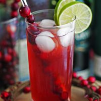 Cranberry Whiskey Ginger Cocktail