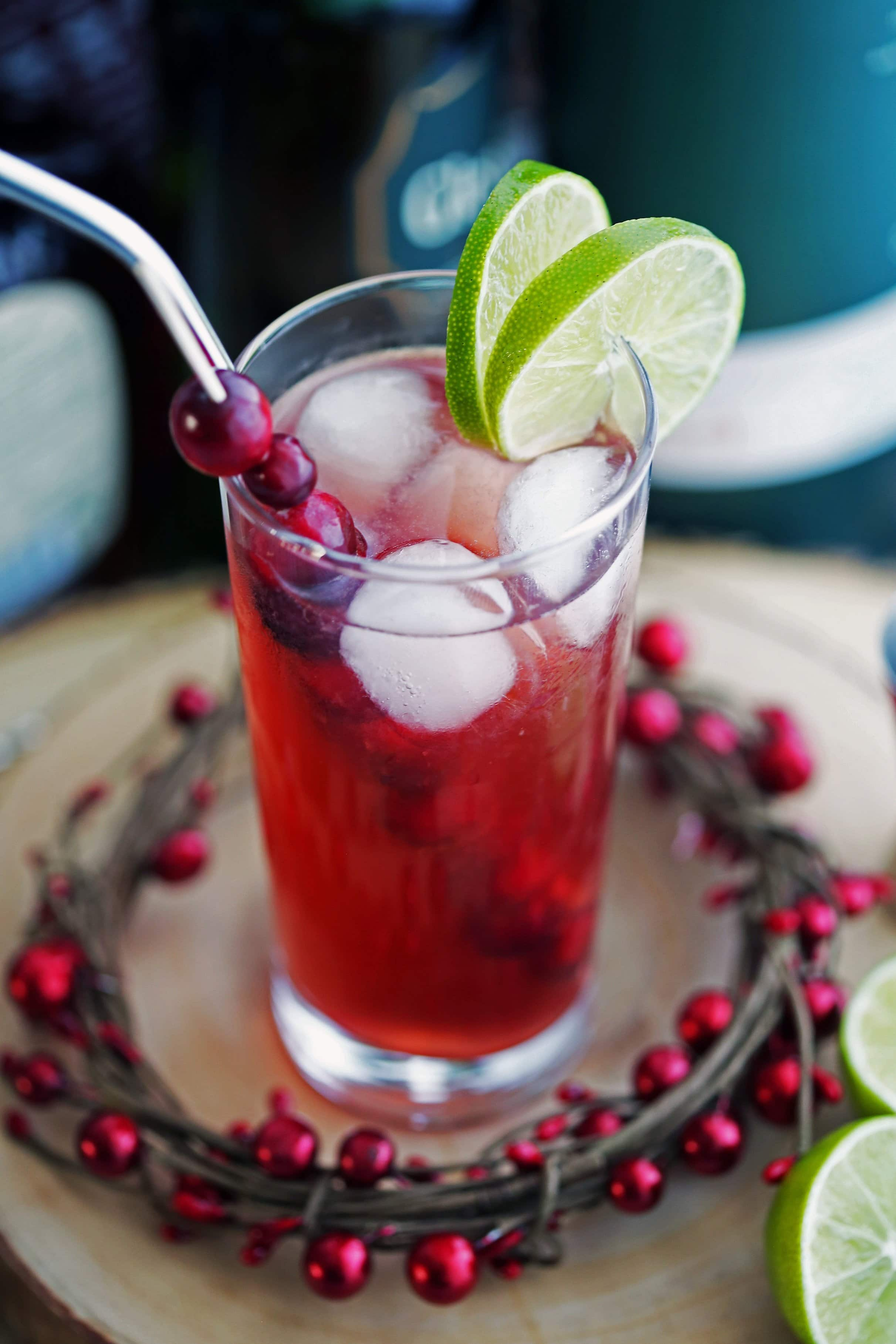 Cranberry Whiskey Ginger Cocktail in a highball glass with lime slices, fresh cranberries, ice cubes, and a stainless steel straw.