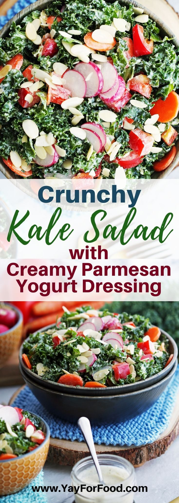 Check out this delicious salad featuring nutritious green kale, colourful vegetables, and a savoury homemade parmesan dressing!