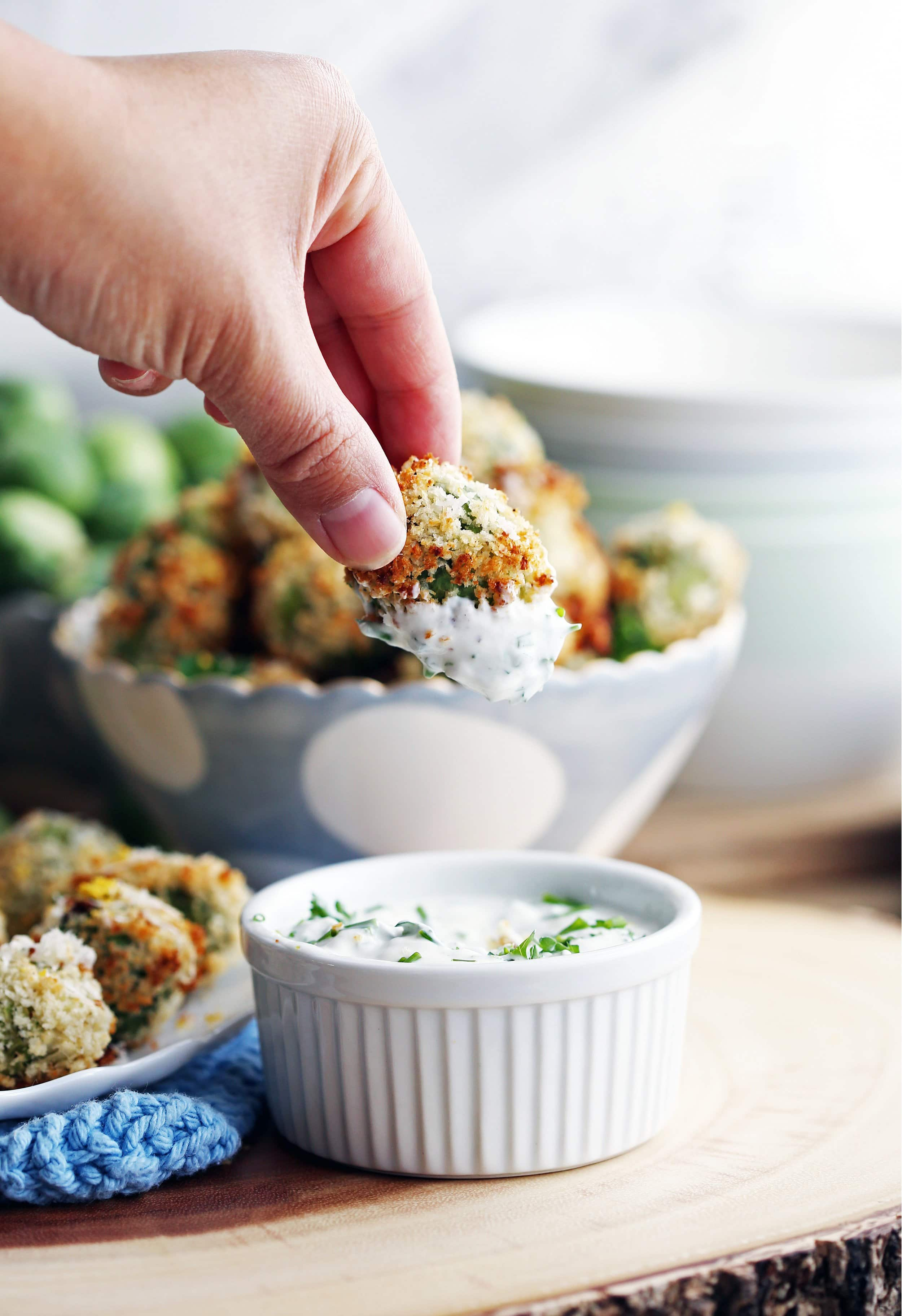 Fingers holding a single parmesan Panko Brussels sprout that has been dipped in sour cream sauce.