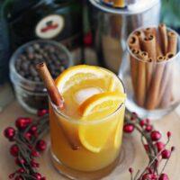 Spiced Orange Brandy Spritzers