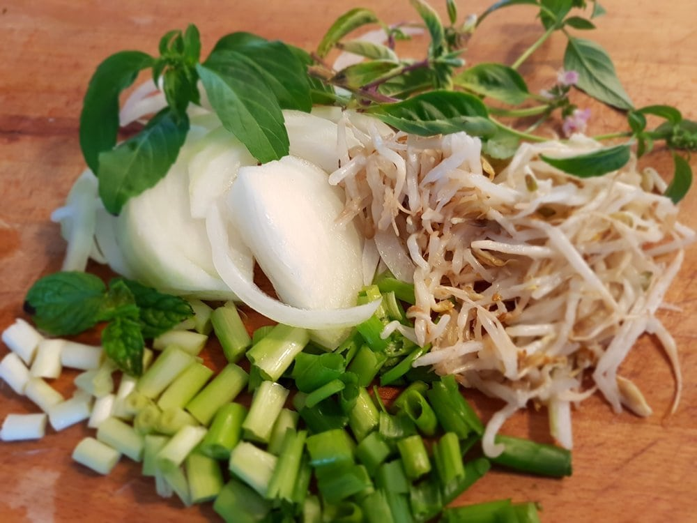 Chopped onions, green onions, bean sprouts, and Thai basil.